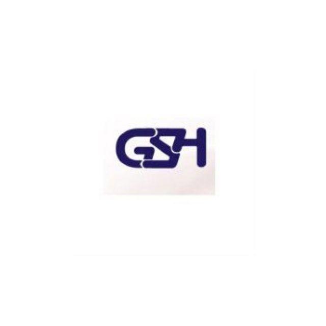 GSH | General Services Holland bv