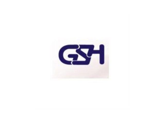 GSH | General Services Holland bv